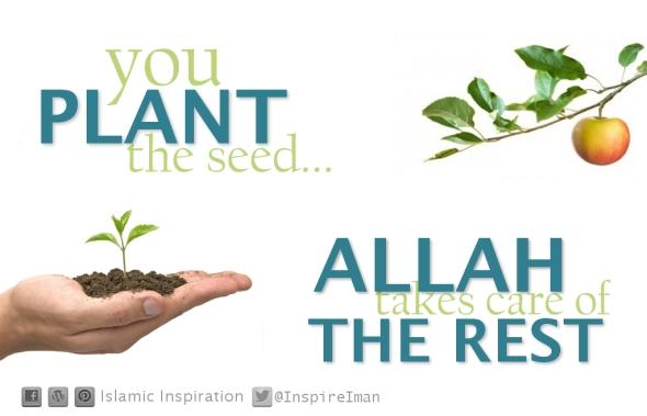 Keep planting.